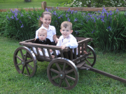 Large pumpkin wagon, in dark brown stain, aluminum wheel bands not available