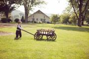 Dark Brown large size pumpkin wagon