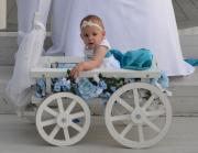 White Medium Pumpkin Wagon