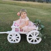 White Small Pumpkin Wagon