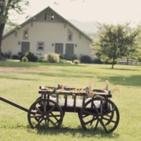 Large Flower Girl Pumpkin Wagon, home