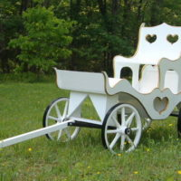 Princess Carriage with steel wheel rims, cinderella throne & custom gold trim
