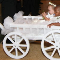 Large Flower Girl Wagon painted white