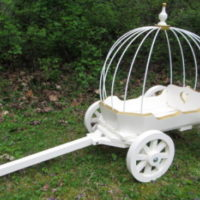 angel carriage painted white, with custom gold trim & hoops
