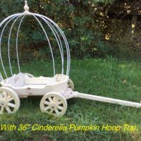 "With 36"" Cinderella Pumpkin Hoop top"